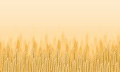 Wheat field - agricultural landscape seamless background. Vector illustration