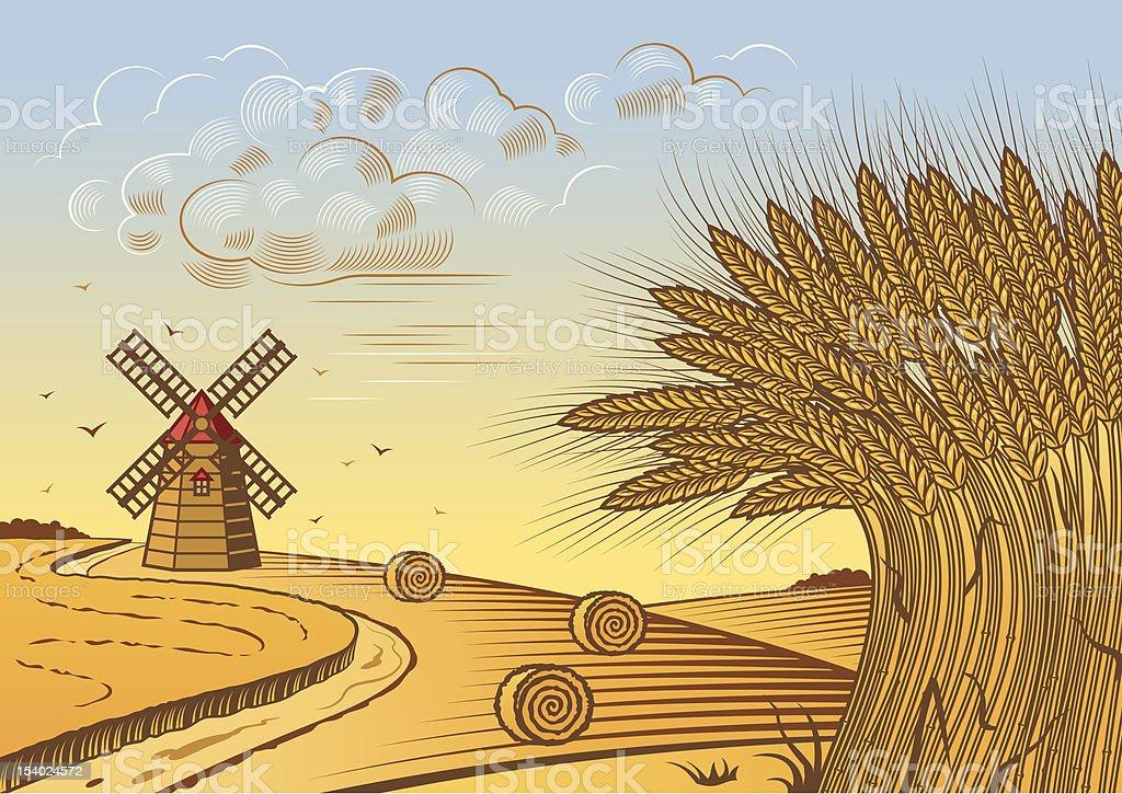 Wheat fields landscape royalty-free stock vector art