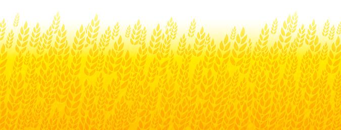 Wheat field abstract border yellow golden grain fall autumn harvest background border pattern design.