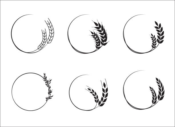 Wheat grains set. A set of icons ready to use in your design. Vector icons can be used on different backgrounds. EPS10. wheat stock illustrations