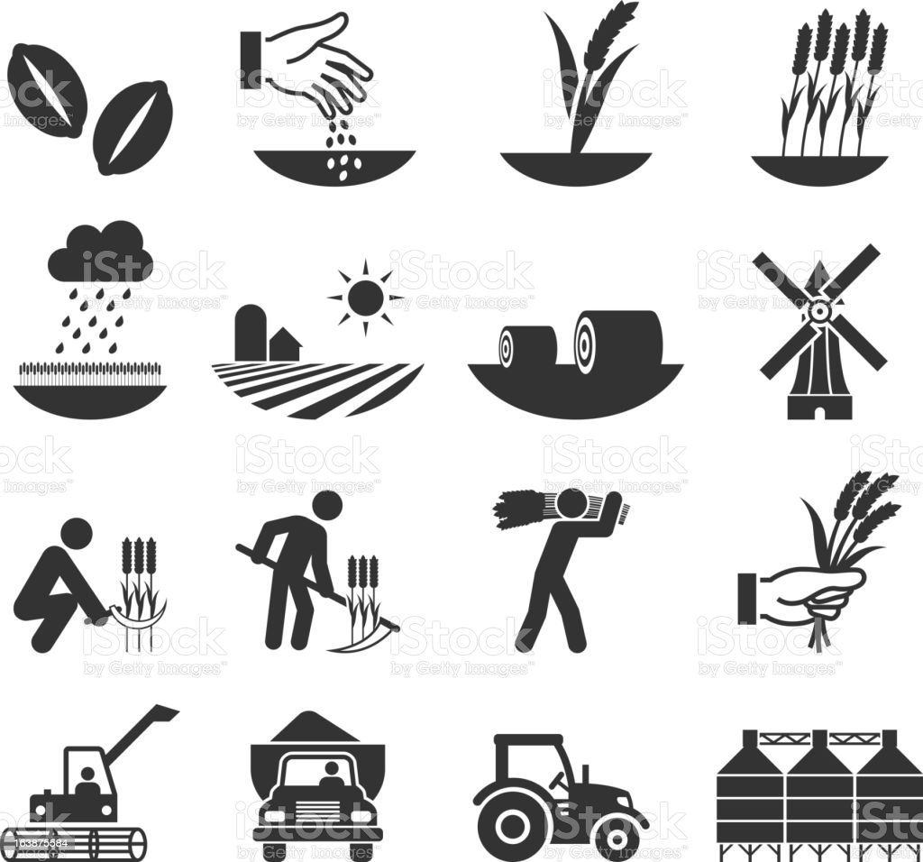 wheat harvest growth and equipment black & white icon set vector art illustration