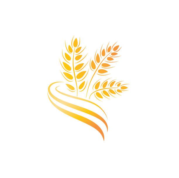 weizen-symbol. landwirtschaft farm-logo. naturprodukt-korn-zeichen - zeichensetzung stock-grafiken, -clipart, -cartoons und -symbole