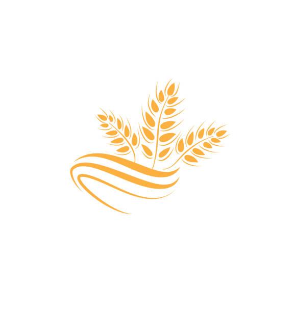weizensymbol. landwirtschaft bauern-logo. naturprodukt kornzeichen - zeichensetzung stock-grafiken, -clipart, -cartoons und -symbole
