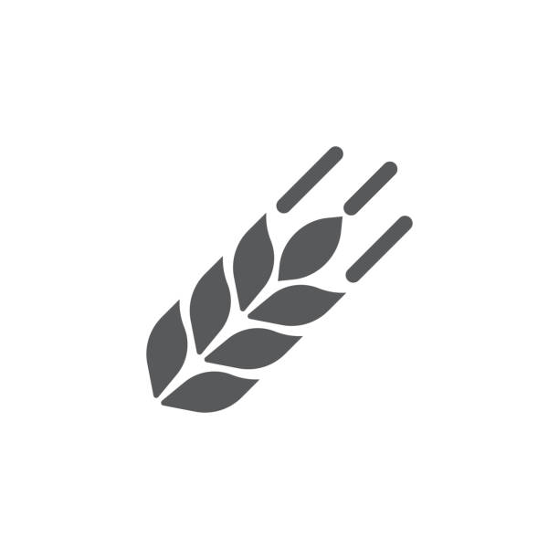 buğday simgesi - buğday stock illustrations