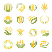 Wheat icon vector set.