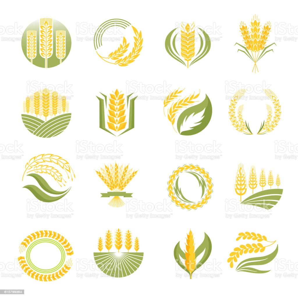 Wheat icon vector set. vector art illustration