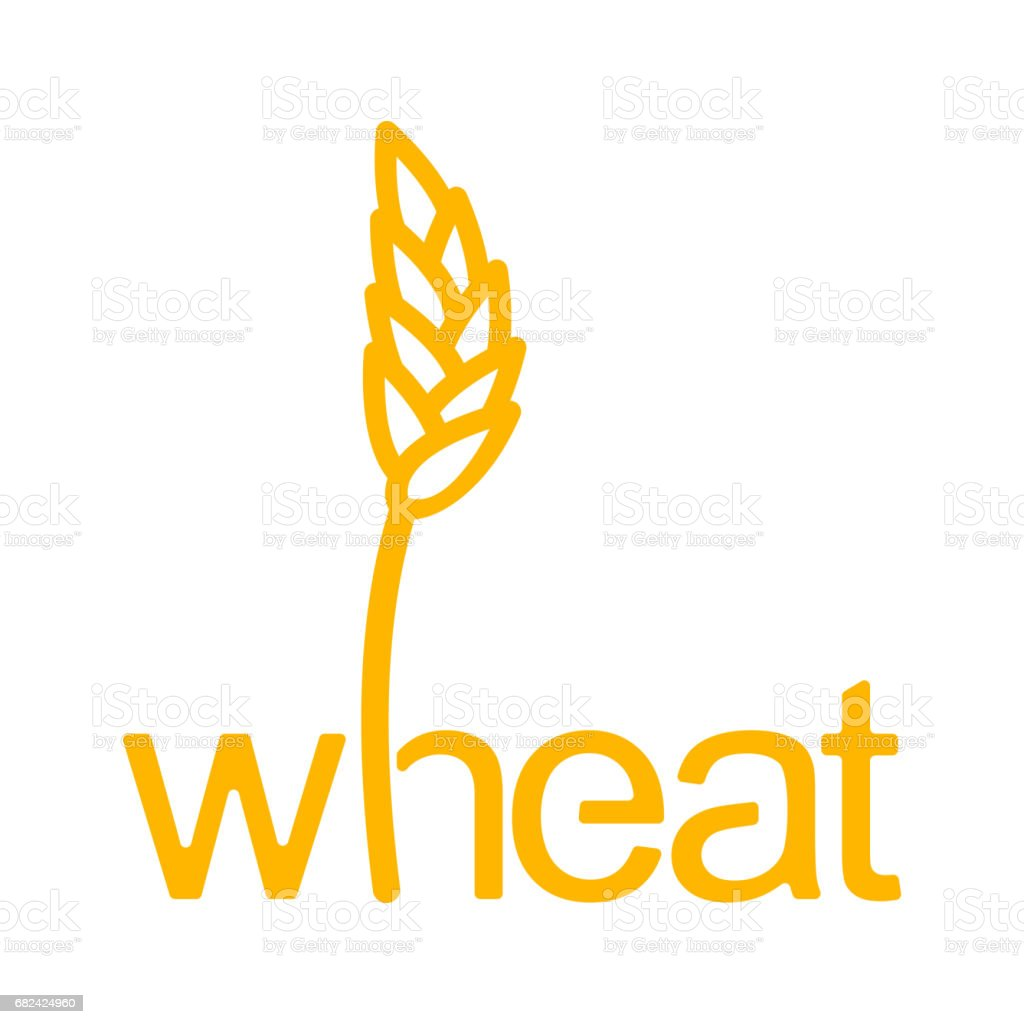 Wheat lettering. Ear of rye and letters. Agricultural emblem royalty-free wheat lettering ear of rye and letters agricultural emblem stock vector art & more images of agriculture