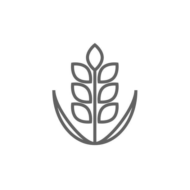 illustrations, cliparts, dessins animés et icônes de blé line icon - fibre