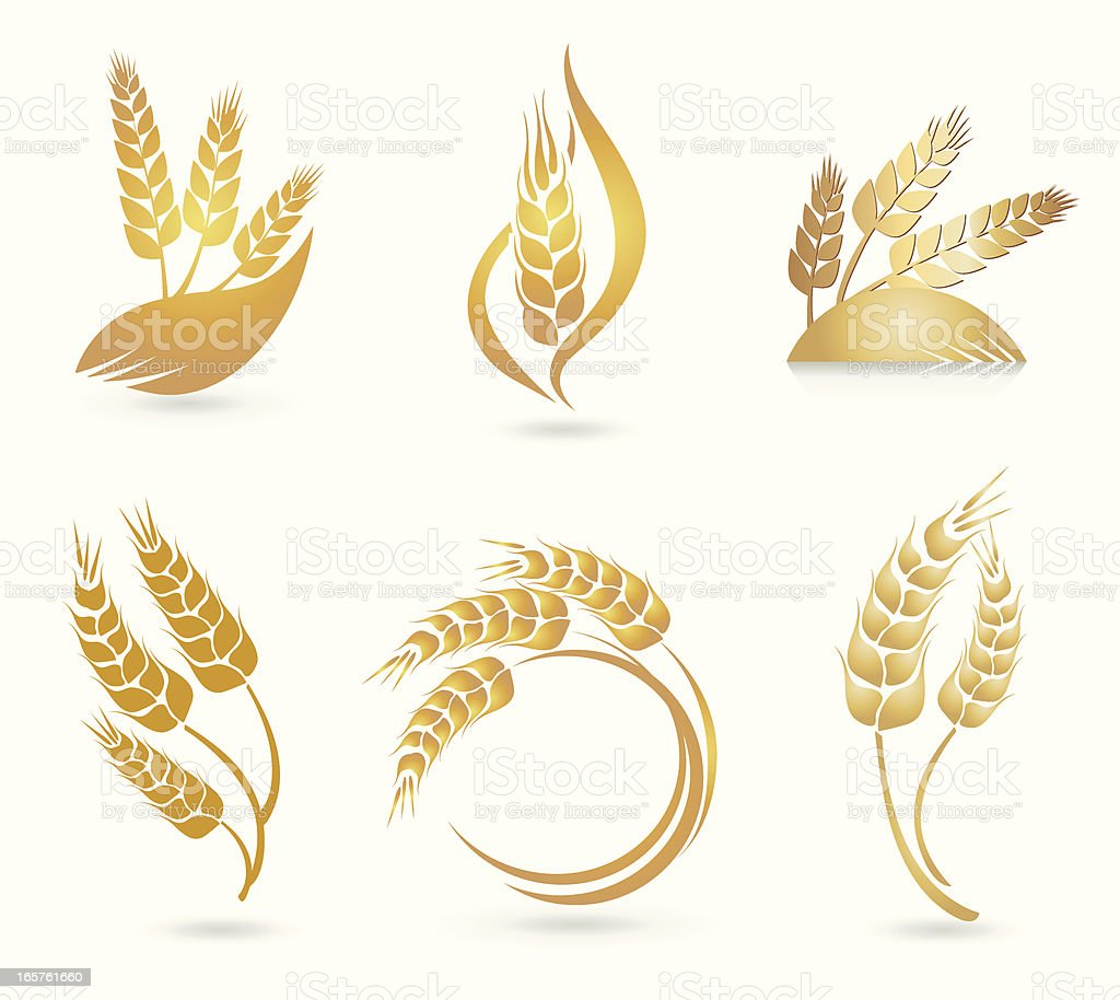 Wheat Logos vector art illustration