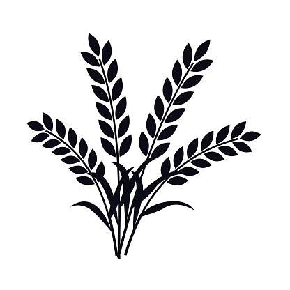 Wheat Plant Ears Vector Stock Illustration - Download ...