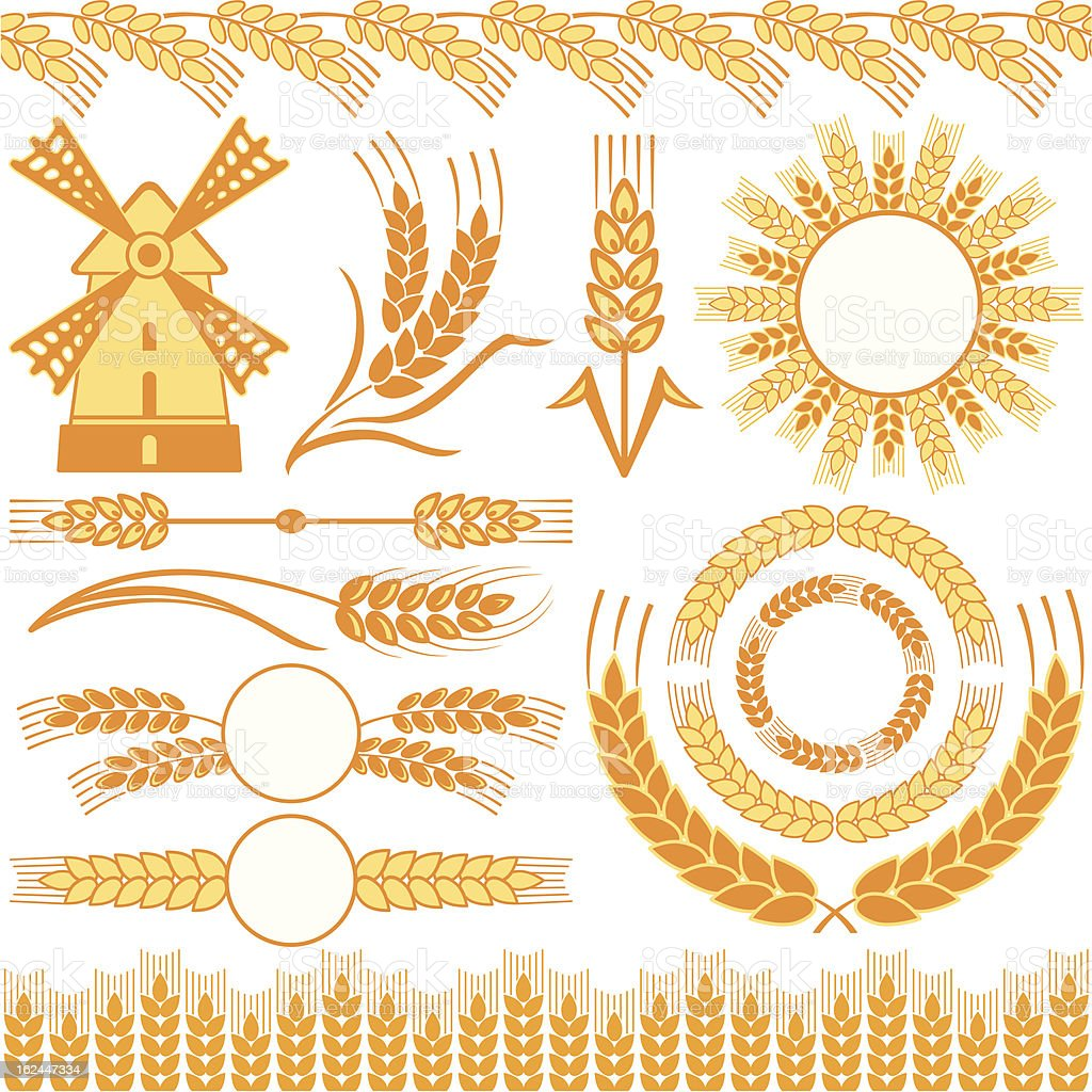 Wheat Set of different shapes and images with wheat Agriculture stock vector