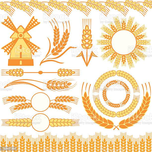 Wheat Stock Illustration - Download Image Now