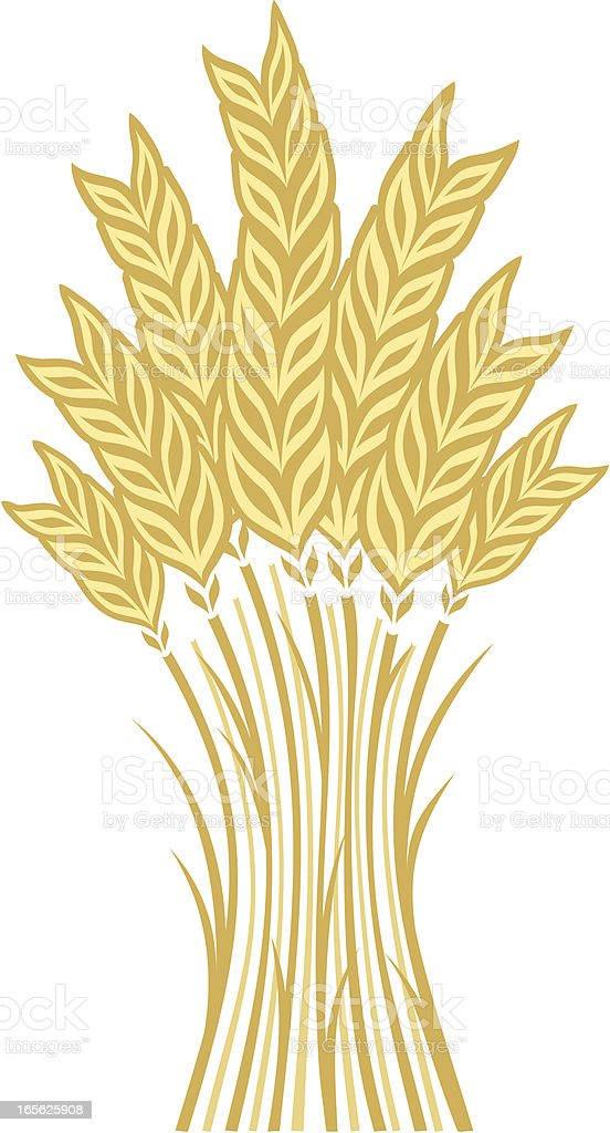 Wheat vector art illustration