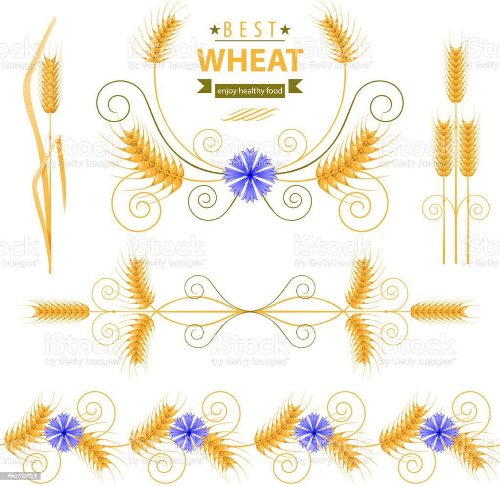 Wheat royalty-free wheat stock vector art & more images of agriculture