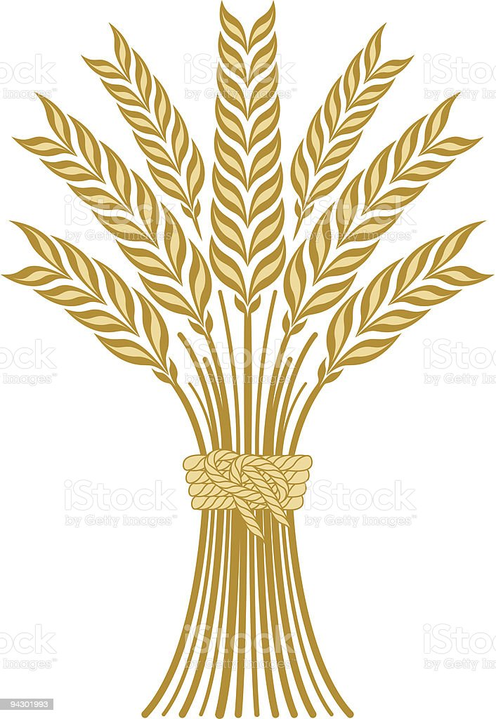 royalty free sheaf of wheat clip art vector images illustrations rh istockphoto com what clip art do screen printers use wheat clipart png