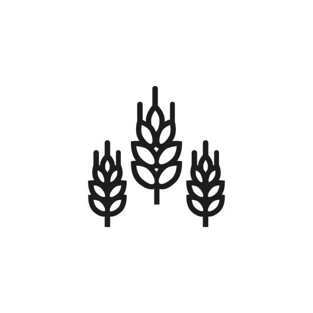 dreschplatz liniensymbol - gluten stock-grafiken, -clipart, -cartoons und -symbole