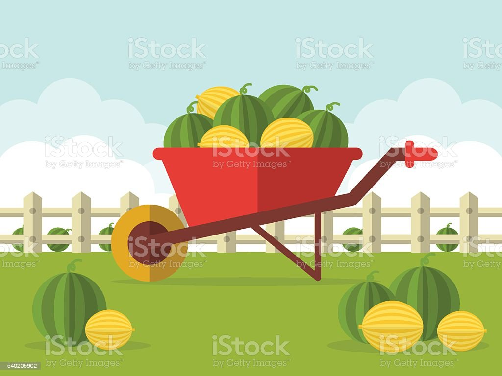 Wheelbarrow with Watermelons and Melons vector art illustration