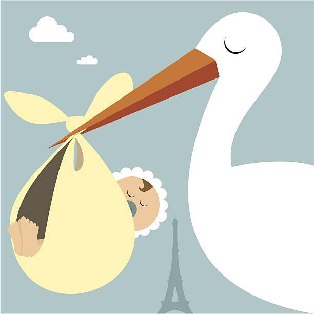 stockillustraties, clipart, cartoons en iconen met where babies come from? - alleen één jongensbaby