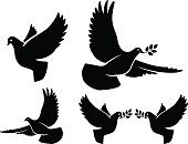 Dove silhouettes. Vector flying dove with olive branch black silhouettes on white background