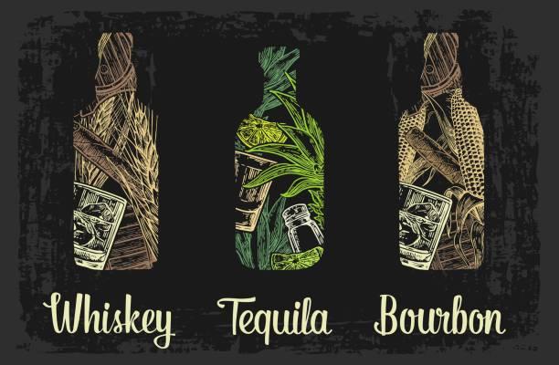 bildbanksillustrationer, clip art samt tecknat material och ikoner med whiskey och tequila flaska med isbitar, cigarr, fat, glas, kaktus, salt och lime. - cactus lime
