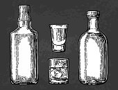 Whiskey and tequila glass, bottle. Vector color engraving