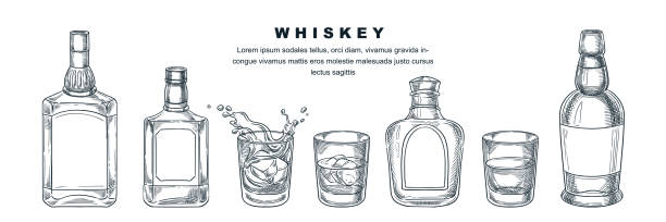 whiskey bottles and glass, vector sketch illustration. scotch, brandy or liquor alcohol drinks. bar menu design elements - alcohol drink drawings stock illustrations
