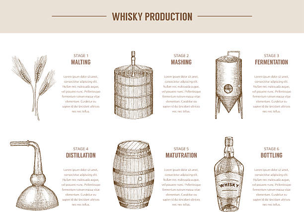 whisky production. - destillieren stock-grafiken, -clipart, -cartoons und -symbole