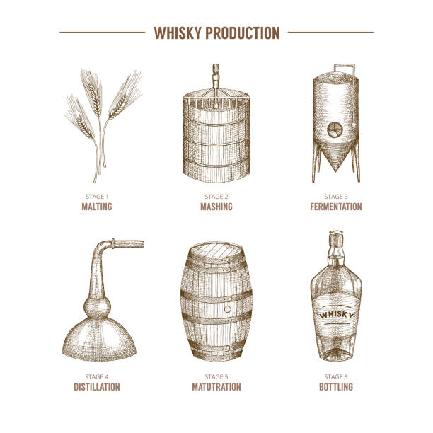 whisky-produktion. - destillieren stock-grafiken, -clipart, -cartoons und -symbole