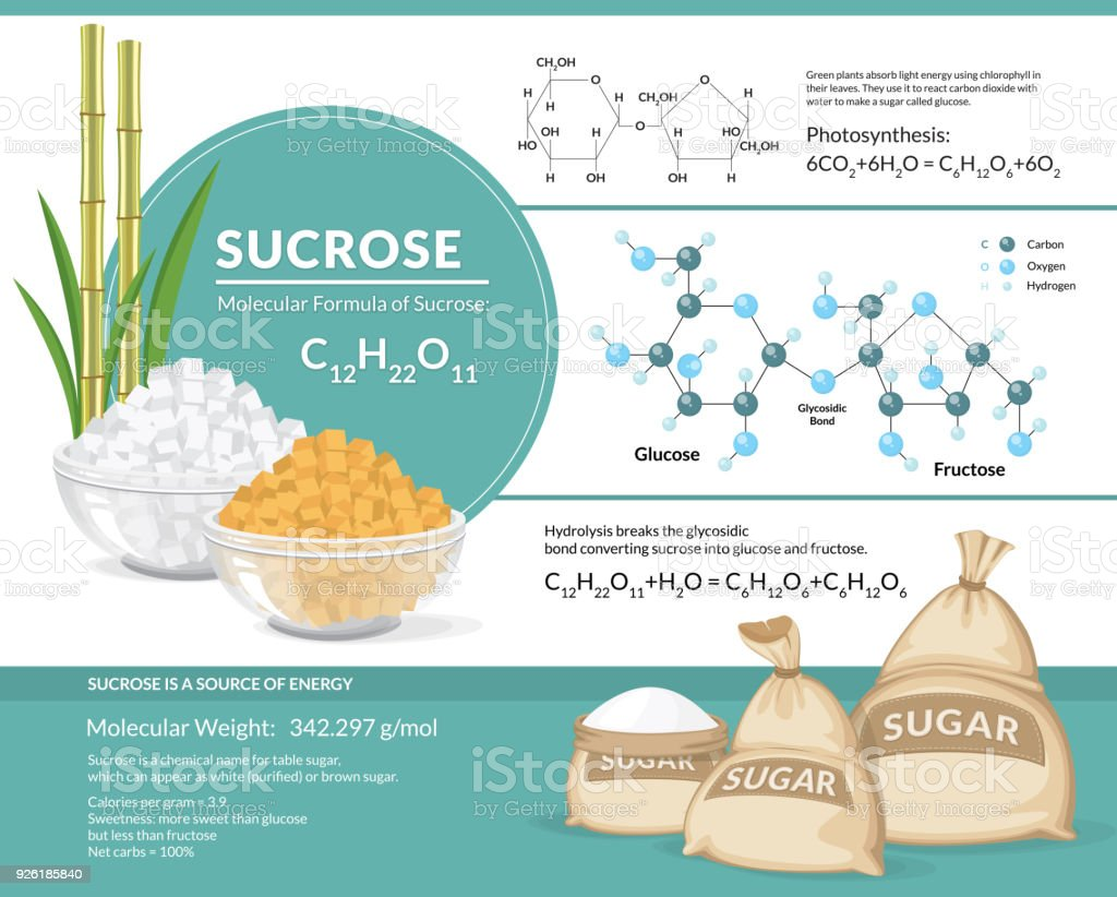 White and brown sugar cubes in bowls. Structural chemical formula and model of sucrose vector art illustration
