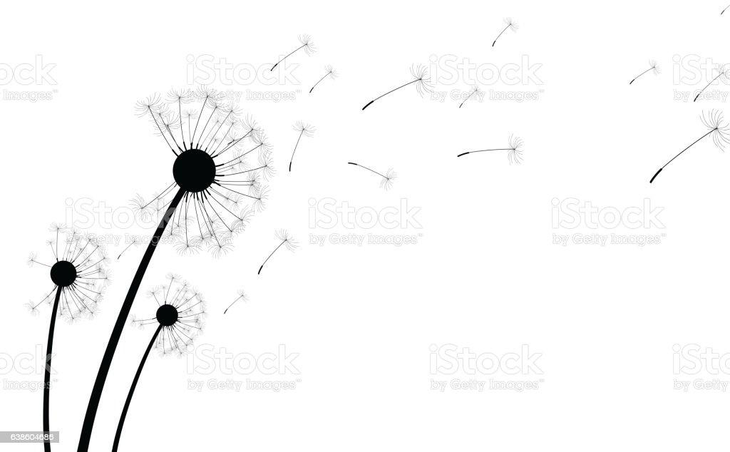 Simple Floral Line Art : Royalty free dandelion clip art vector images illustrations