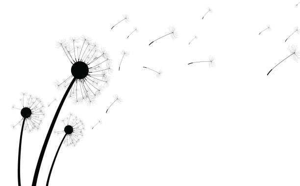 White Background With Dandelions Vector Art Illustration
