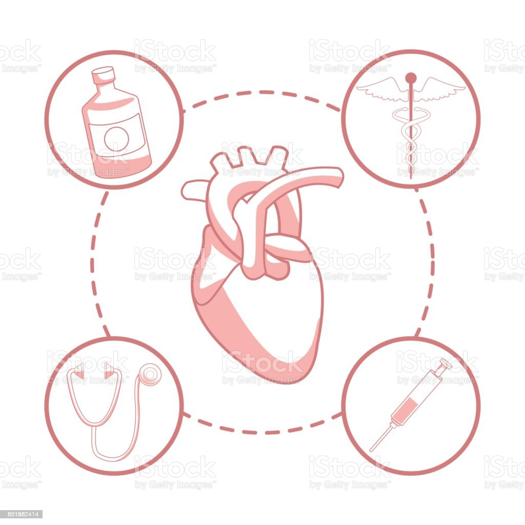 white background with red color sections of silhouette heart organ with circular frame elements health vector art illustration