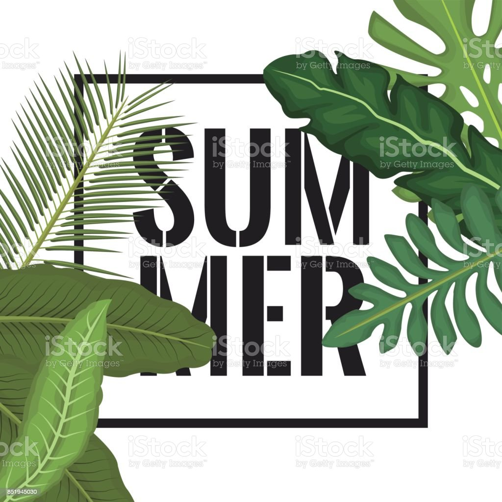 white background with side border decorative green leaves and rectangular frame with summer text vector art illustration