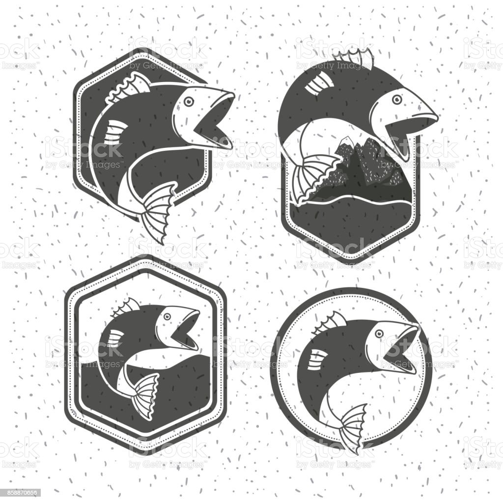 white background with sparkle of monochrome silhouette set shield emblem with types of fish vector art illustration