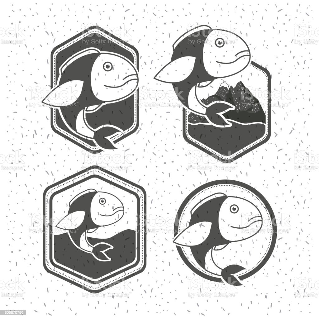 white background with sparkle of silhouette set shield with types of fish vector art illustration