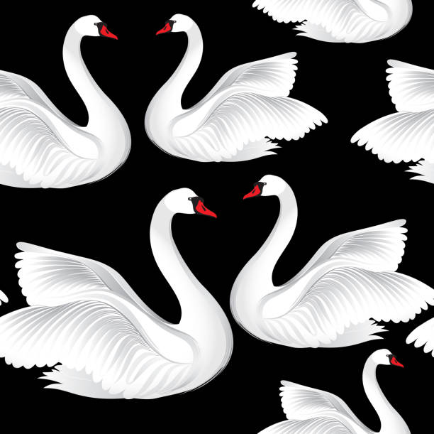 ilustrações de stock, clip art, desenhos animados e ícones de white birds seamless pattern. wildlife background. swimming swan in love ornament - bills couple