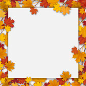 White paper sheet and fallen colorful maple leaves. Vector autumn background.