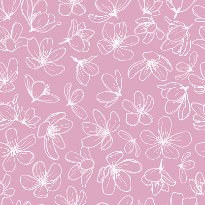 White blossom line flowers on pink background.