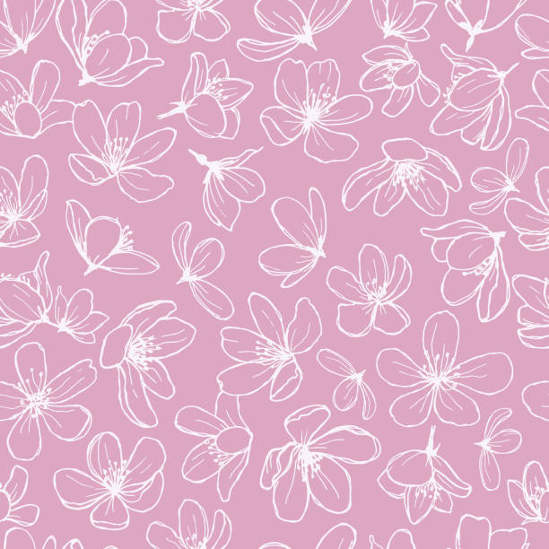 stockillustraties, clipart, cartoons en iconen met witte bloesem lijn bloemen op roze achtergrond. - bloesem