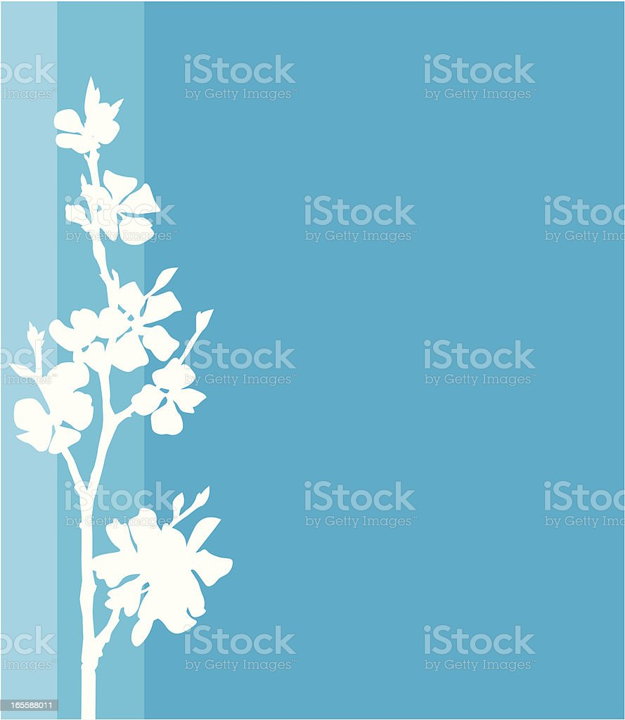 White blossomed branch. royalty-free stock vector art