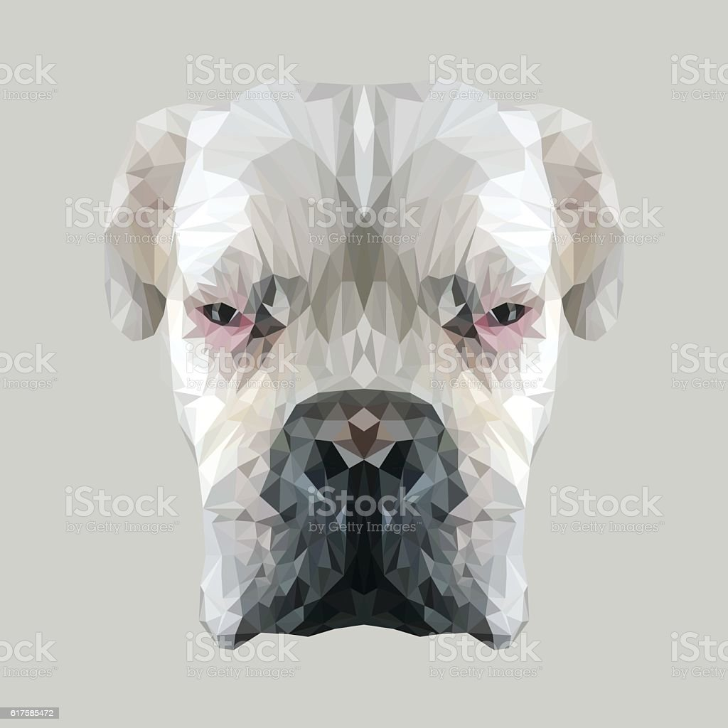 White Boxer Dog Animal Low Poly Design Royalty Free