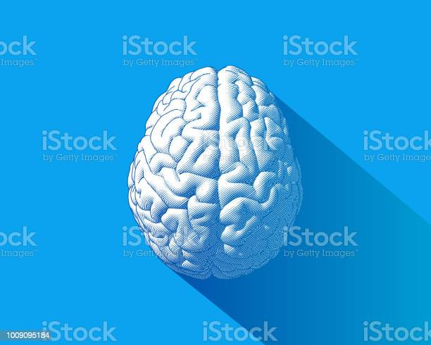 White brain illustration isolated on blue bg vector id1009095184?b=1&k=6&m=1009095184&s=612x612&h=t1tnxaqy 7n5d9imrek7bwdypvrdc9jlts1trxbh3ak=