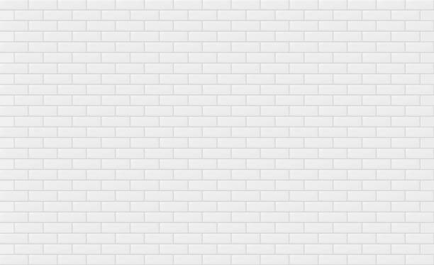 White brick wall texture for text or background. Vector illustration vector art illustration