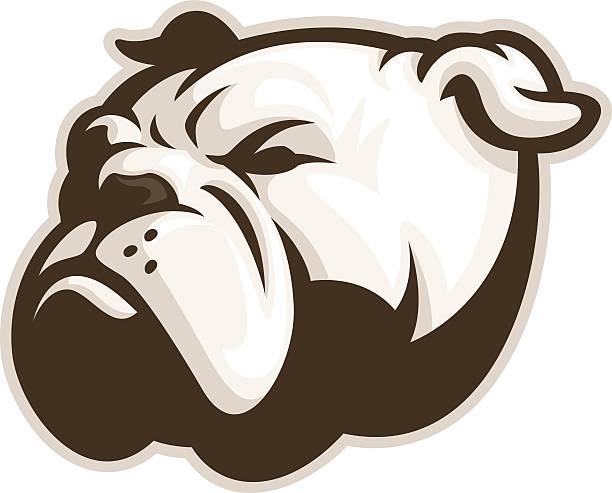 bildbanksillustrationer, clip art samt tecknat material och ikoner med white bulldog mascot - bulldog