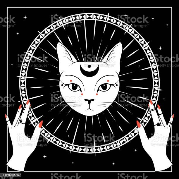 White cat face with moon on night sky with ornamental round frame vector id1128075762?b=1&k=6&m=1128075762&s=612x612&h=rg2a5ysorsseev5mb7aiwyusmhgm a ky xseebpw7i=