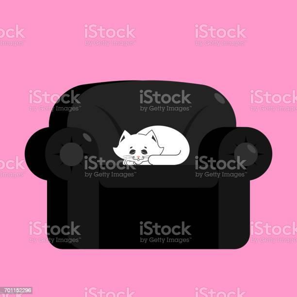 White cat on black armchair home pet on chair vector id701152296?b=1&k=6&m=701152296&s=612x612&h=rvy6xzwlrc05qbwwjgkifuyc9smuwfpuebds dnc2ns=