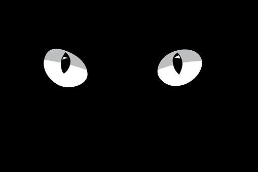White cat's eyes isolated on black background. Vector design element.