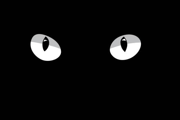 White cat's eyes isolated on black background. Vector design element. White cat's eyes isolated on black background. Vector design element. scared cat stock illustrations
