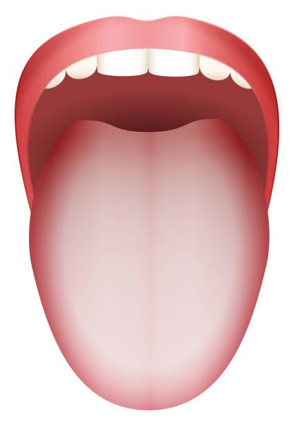 Top 60 Tongue Clip Art, Vector Graphics and Illustrations ...