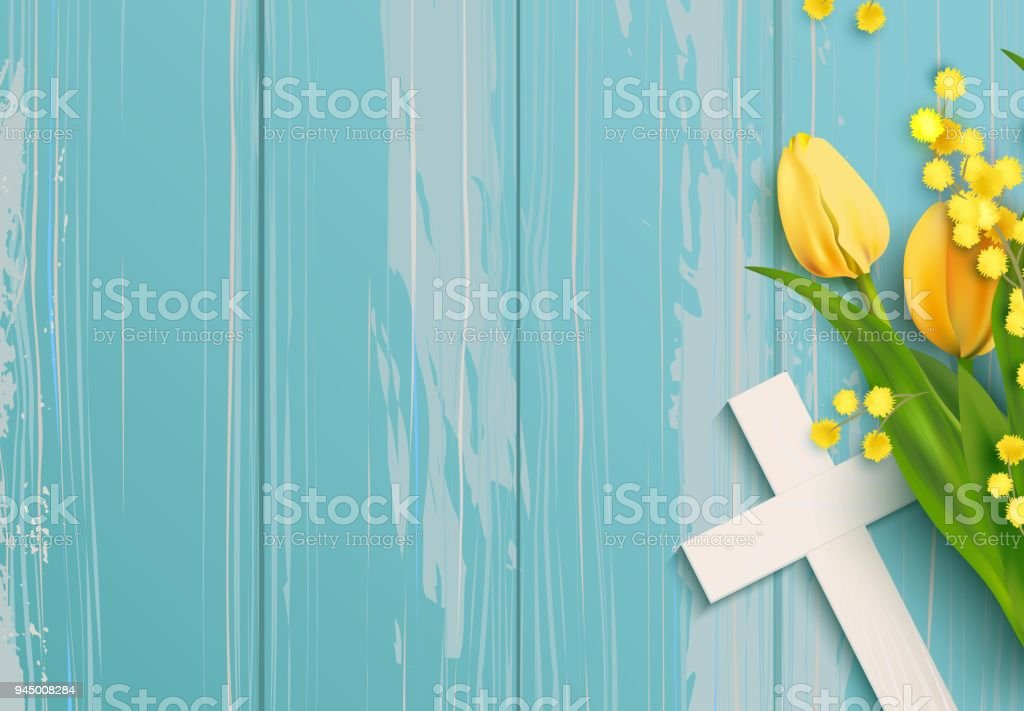 White Cross Mimosa Branch And Yellow Tulips On Rustic Wooden Background Royalty Free